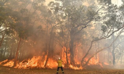 Fires in Australia that are tearing a forest are trying to be put out by a fireman.