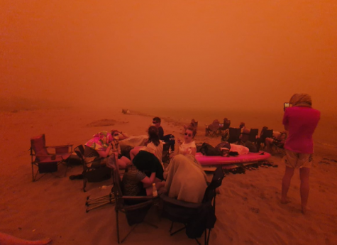 This is an image of an evacuation on a  beach in Australia.