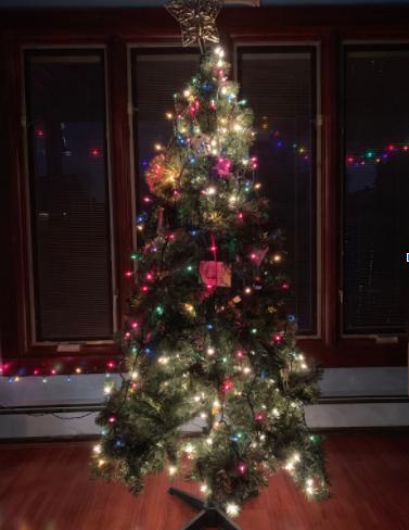 Christmas During the Corona Virus