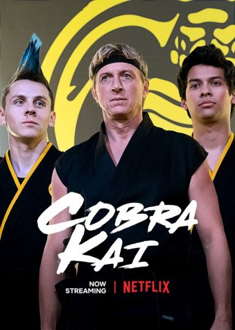Cobra Kai: A Review